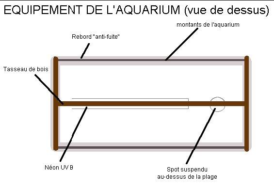 Installer Un Aquarium Pour Tortues D Eau Fiches Pratiques La